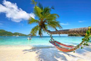 wyspa nad morzem zagranicznym z palmami i leżakiem